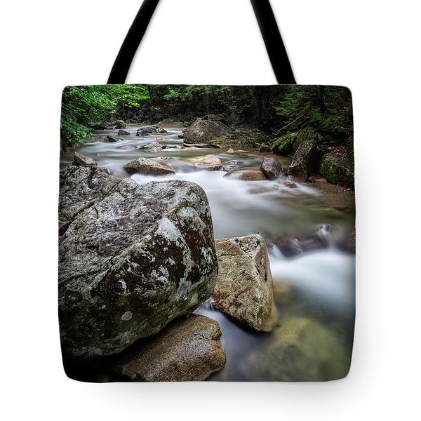 Tote Bag featuring the photograph Pemi-basin Trail by Michael Hubley