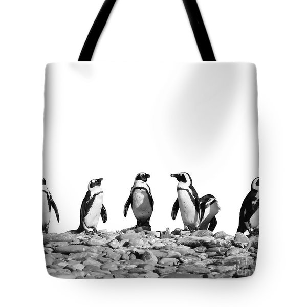 Penguins Tote Bag by Delphimages Photo Creations