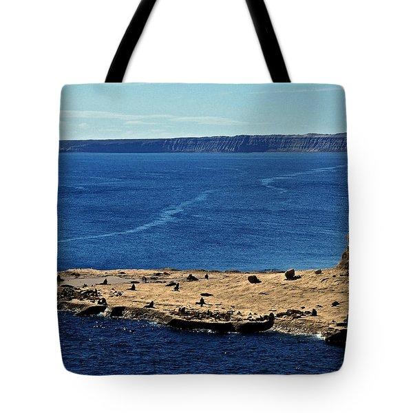 Peninsula De Valdez Tote Bag by Juergen Weiss