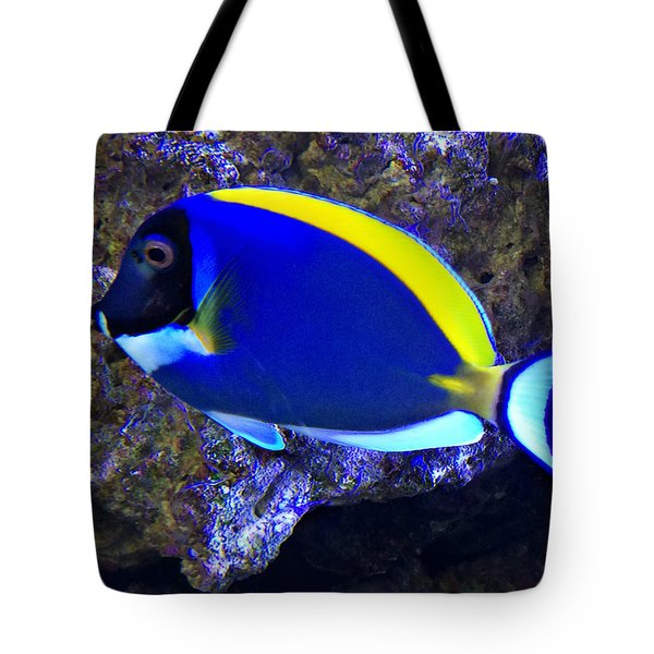 Blue Tang Fish  Tote Bag by Kathy M Krause