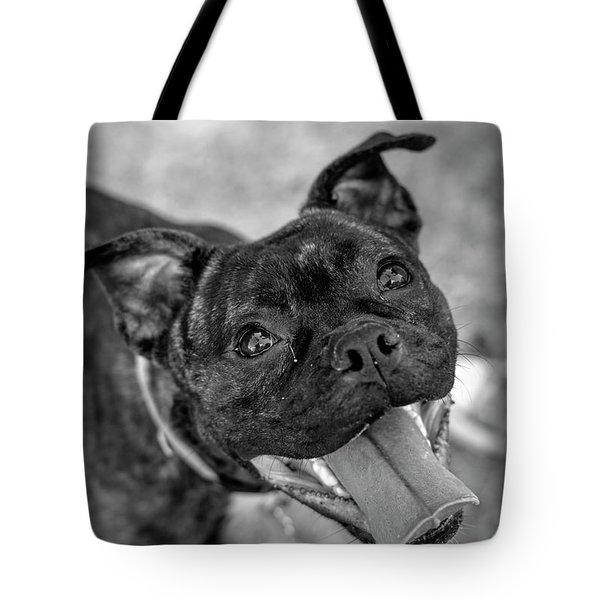 Penny - Dog Portrait Tote Bag