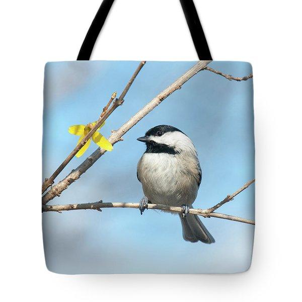 Pensive Chickadee Tote Bag