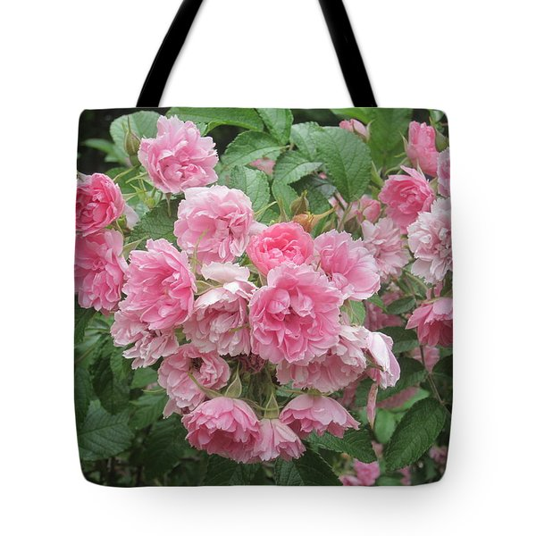 Peonies At Glen Magna Farms Tote Bag