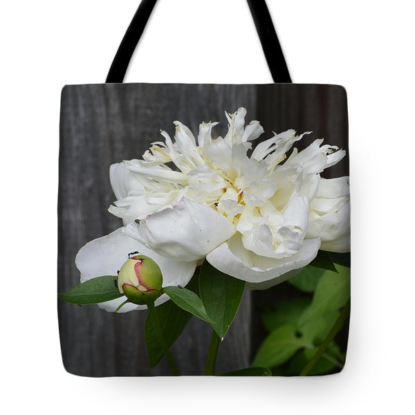 Tote Bag featuring the photograph Peonies  by Lyle Crump