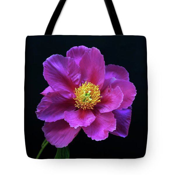Peony - Beautiful Flowers And Decorative Foliage On The Right Is One Of The First Places Among The G Tote Bag