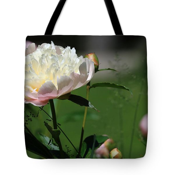 Tote Bag featuring the photograph Peony Beauty by Rick Morgan