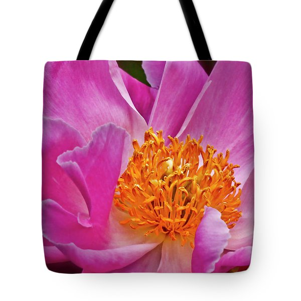 Pink Flower Peony Garden Wall Art Tote Bag