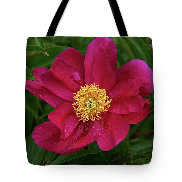 Tote Bag featuring the photograph Peony In Rain by Sandy Keeton