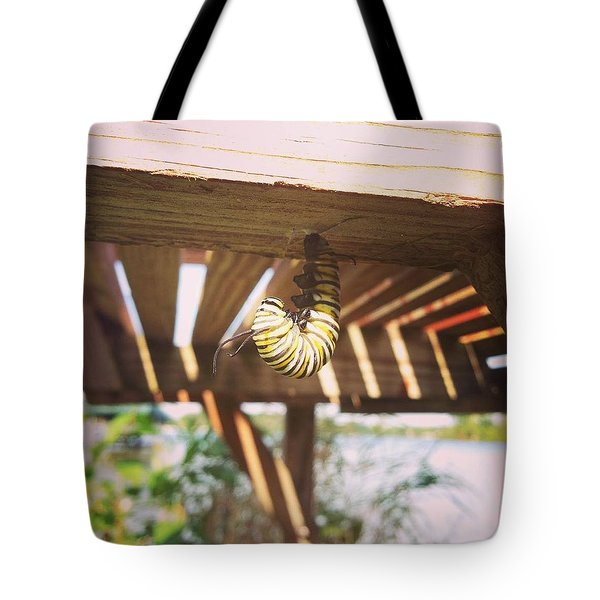Peparing For Transformation Tote Bag