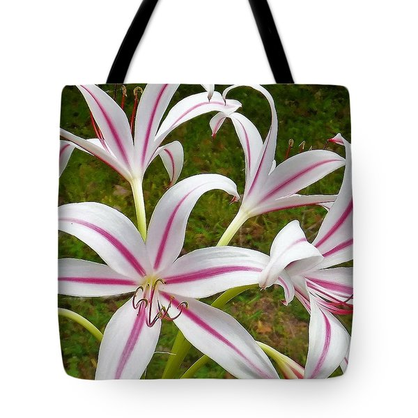 Peppermint Lilies Tote Bag