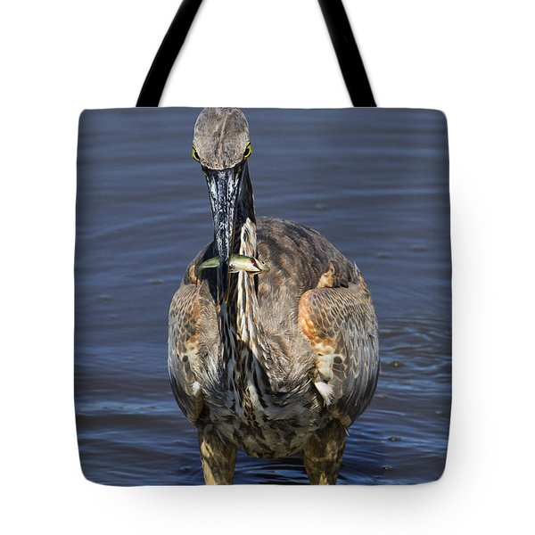 Perch Anyone? Tote Bag