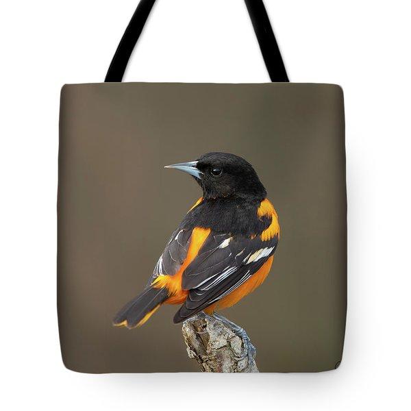 Perched Baltimore Oriole Tote Bag