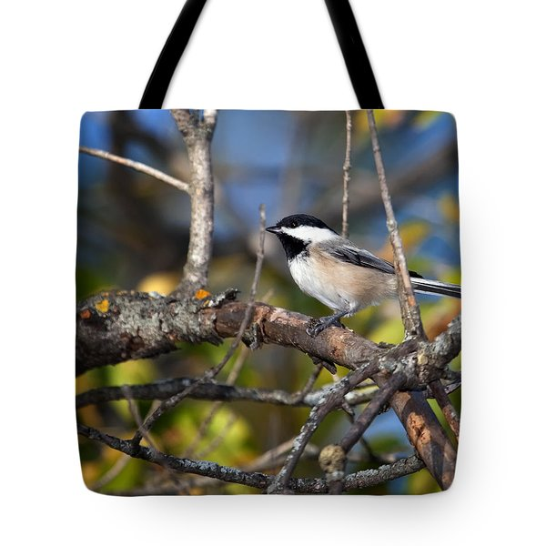 Perched Black-capped Chickadee Tote Bag