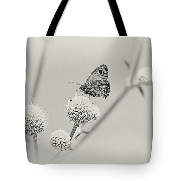 Perched Butterfly No. 255-2 Tote Bag