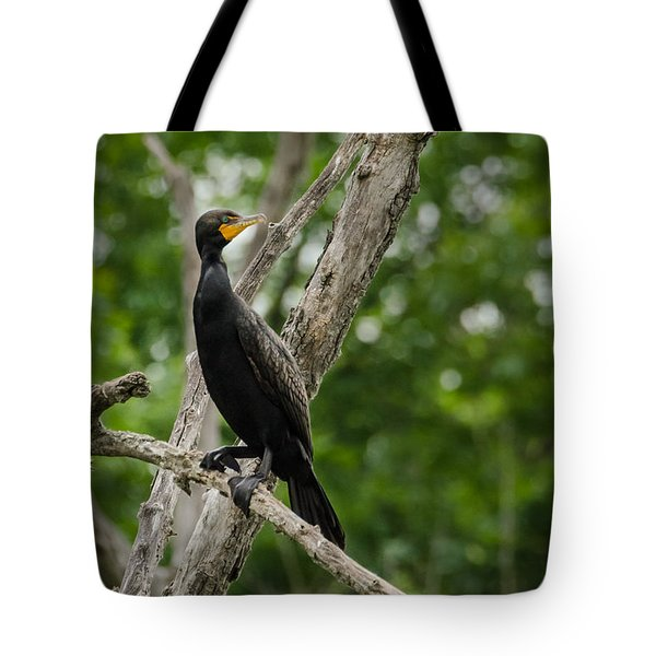 Perched Double-crested Cormorant Tote Bag