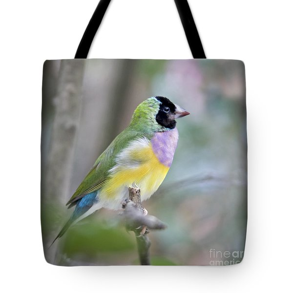 Perched Gouldian Finch Tote Bag