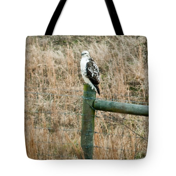 Perched Hawk Tote Bag by Douglas Barnett