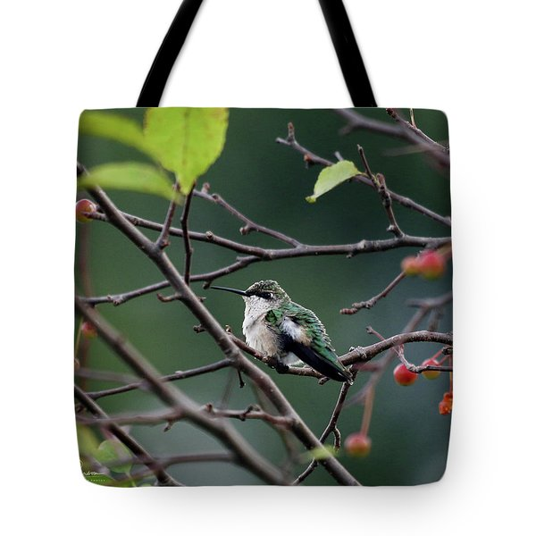 Tote Bag featuring the photograph Perched by Jackson Pearson