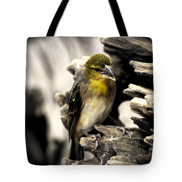 Perched Tote Bag by Martin Newman