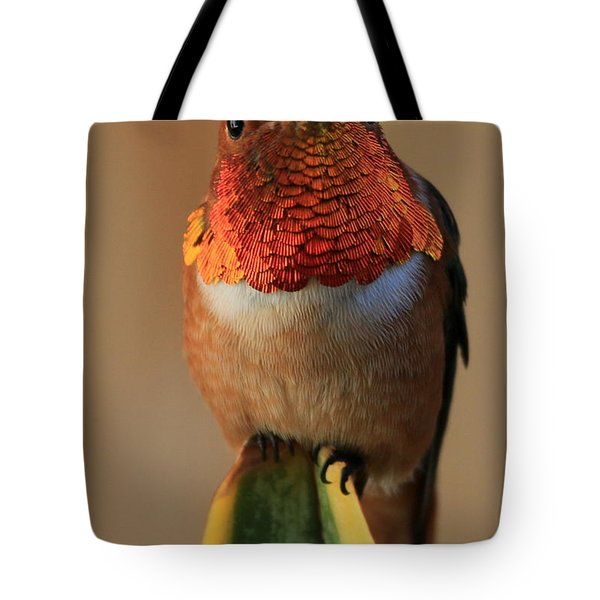 Perched On A Point Tote Bag