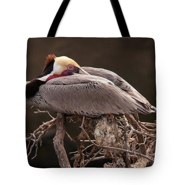 Perched Pelican Tote Bag