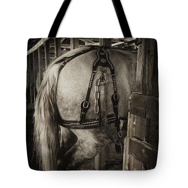 Percheron Draft Horse Tote Bag by Theresa Tahara