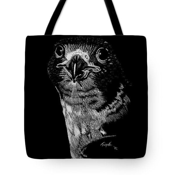 Peregrin Falcon Tote Bag by Lawrence Tripoli