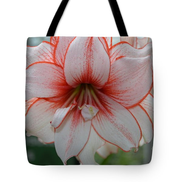 Perfect Amarylis Tote Bag