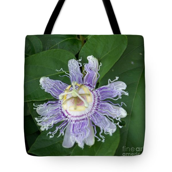 Perfect Passion Flower Tote Bag by Shirley Moravec