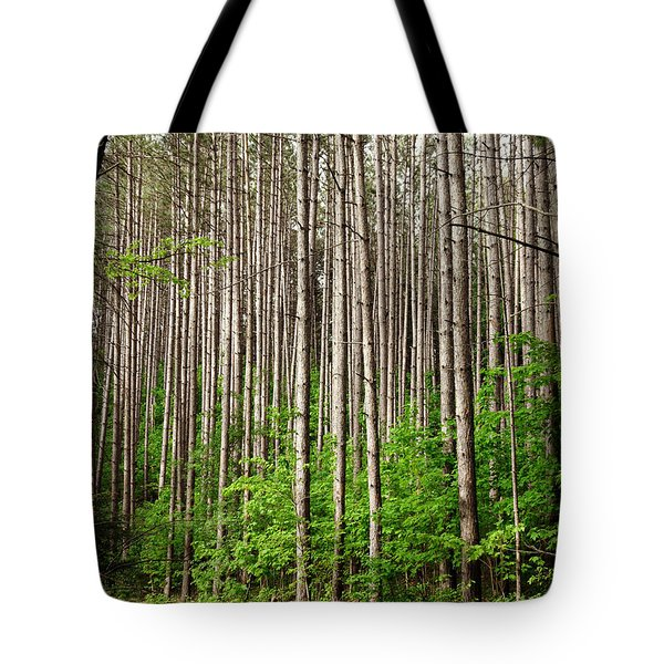 Perfect Path Tote Bag