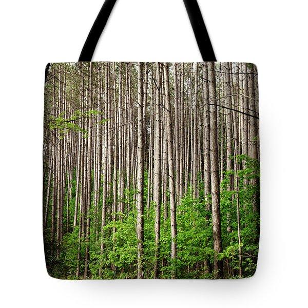 Perfect Path Tote Bag