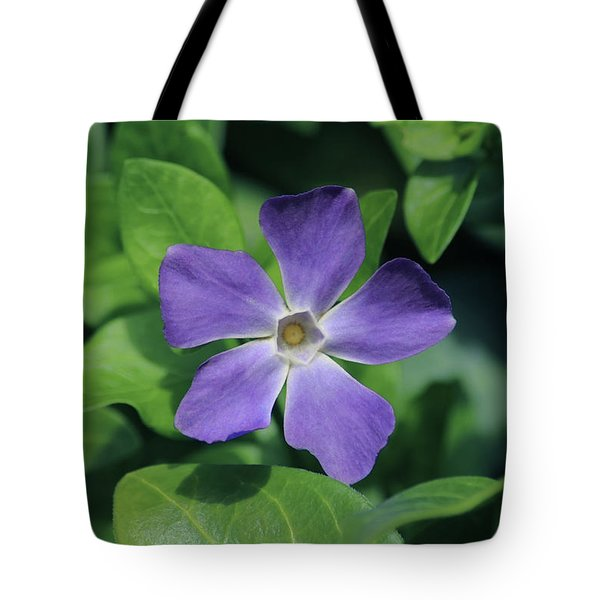 Perfect Purple Periwinkle Tote Bag by Richard Stephen