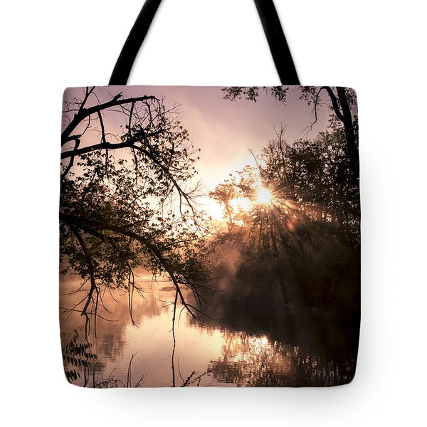 Perfect Reflections Tote Bag by Annette Berglund