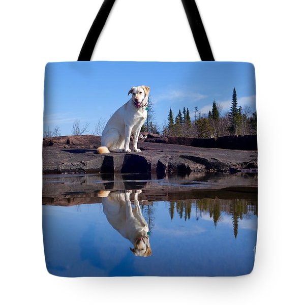 Perfect Reflections Tote Bag by Sandra Updyke