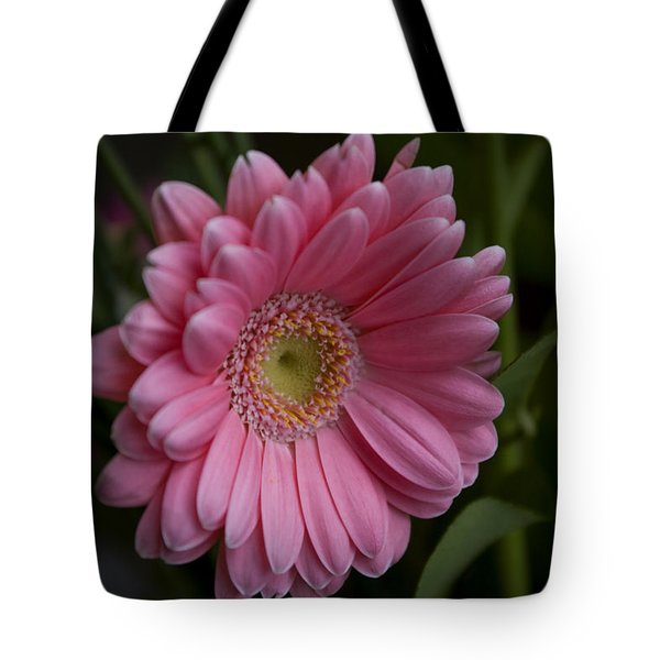 Perfection Tote Bag by Rhonda McDougall