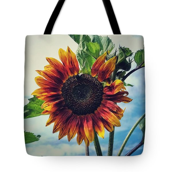 Tote Bag featuring the photograph Perfectly Imperfect by Karen Stahlros