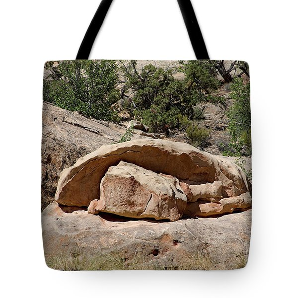 Tote Bag featuring the photograph Perhaps Petrified by PJ Boylan