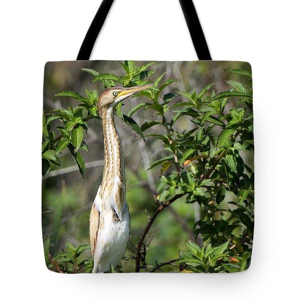 Periscope Up Tote Bag