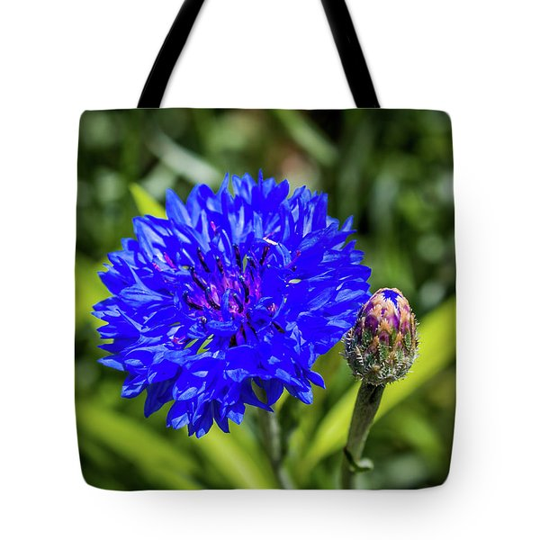 Perky Cornflower Tote Bag