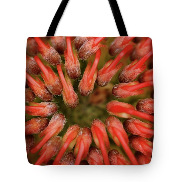 Perseverance Tote Bag by Stephen Mitchell