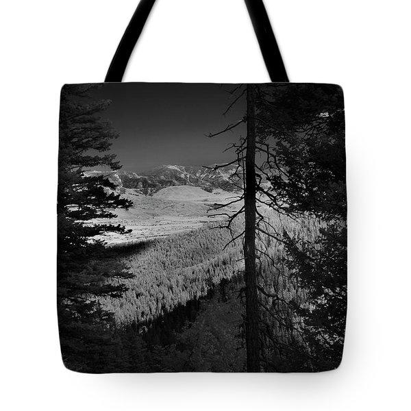 Perspective Range Tote Bag