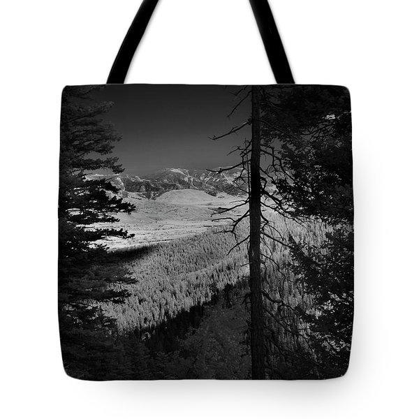 Perspective Range Tote Bag