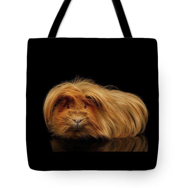 Trump Guinea  Tote Bag