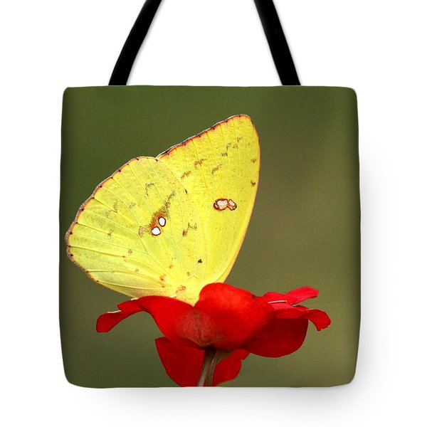 Tote Bag featuring the photograph Petals And Wings by Sheila Brown