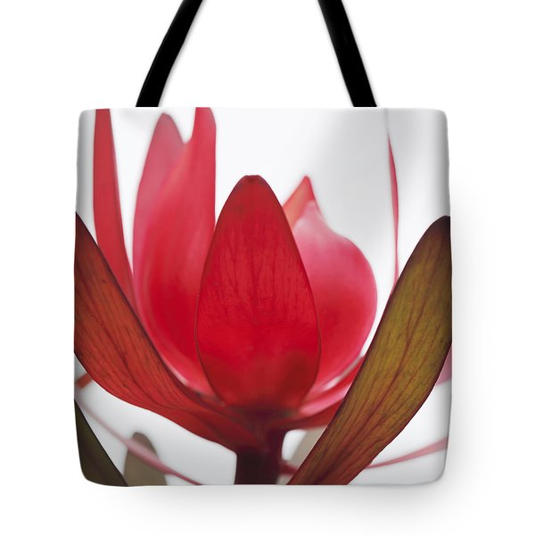 Tote Bag featuring the digital art Petals by Margaret Hormann Bfa
