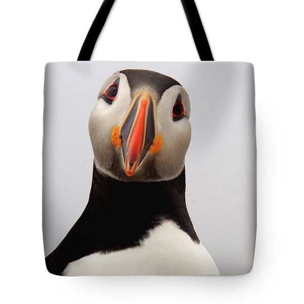 Peter The Puffin Tote Bag by Jane Axman