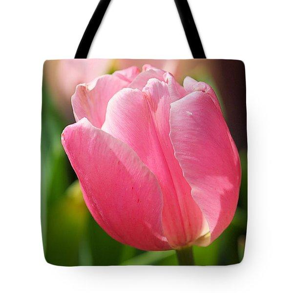 Petite Pink Tote Bag