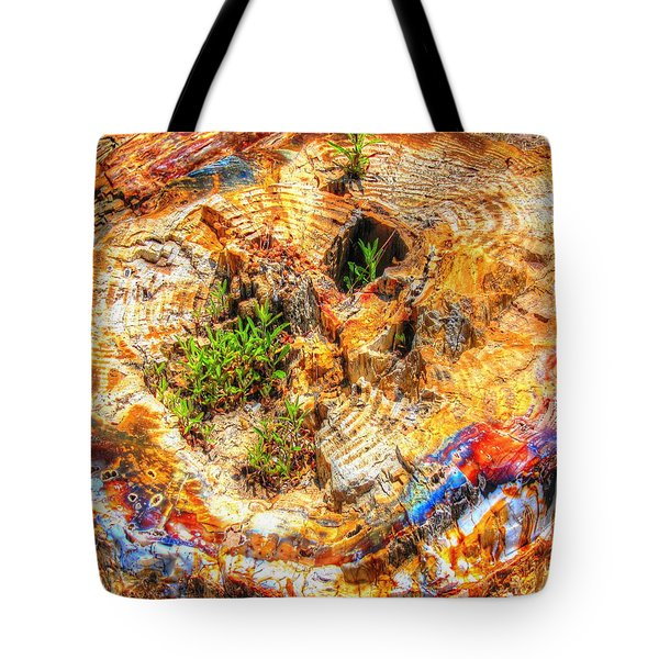 Petrified Abstraction No 2 Tote Bag