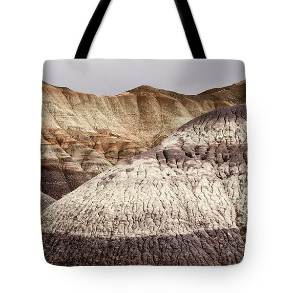 Petrified Forest National Park 1 Tote Bag