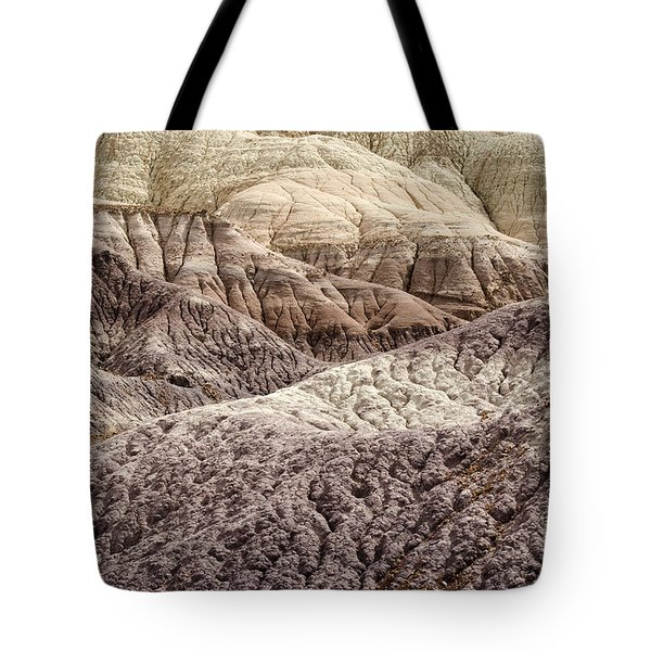 Petrified Forest National Park 2 Tote Bag